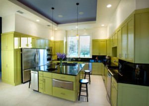 Contemporary Kitchen Cabinet Doors contemporary kitchen with bamboo cabinetry bamboo cabinets Contemporary Kitchen 4