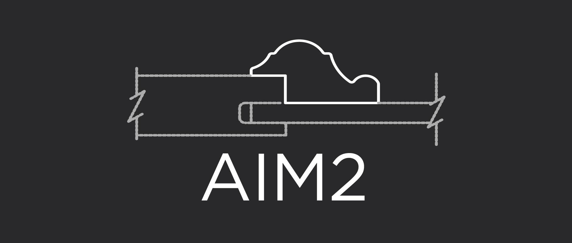 AIM2 inside-edge applied molding